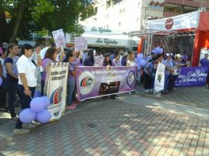 Caminata en conmemoración al Aniversario de la Red VID contra la Violencia Doméstica