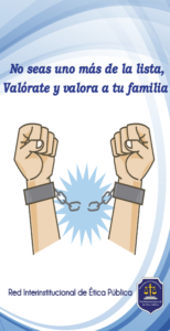 PRINCIPIOS DE LA FUNCION PUBLICA